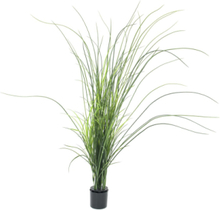 Reed (grass), artificial, 145cm