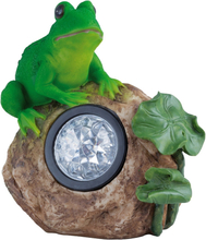 Prydnadsfigur Froggy LED med solcell