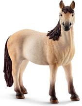 Bondegårdsdyr Mustang mare