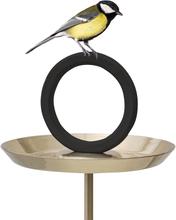 Born in Sweden - Round Up Fuglemater/Fuglebad Gull