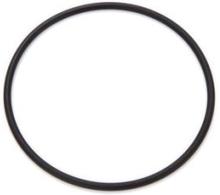 Prisma O-ring till Filterbehållare