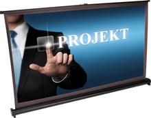 "Desktop Projection Screen 40"""