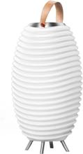 Nedis Bluetooth-högtalare med LED-lampa och Vinkylare