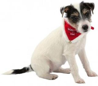 Juletørklæde til hunde
