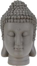 Buddha hoved - Varm grå