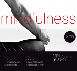 Mindfulness (dobbelt CD)