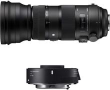 SIGMA AF 150-600 f/5-6.3 DG OS HSM Sports + TC-1401 EOS