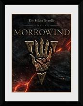 The Elder Scrolls - Online Morrowwind - Logo - Inramad bild - multicolor