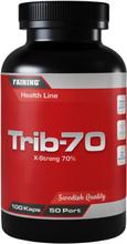 Fairing Trib70 - 100 kaps