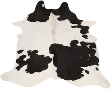 Koskin Clara médio (svart vitt) 2-3 m²