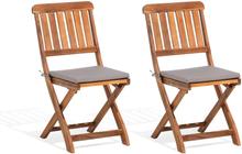 Puutarhatuoli puinen (2 kpl) CENTO