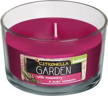 Bolsius geurglas citronella garden 62/106 citronel