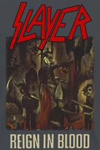 Slayer - Reign In Blood -T-skjorte - koksgrå