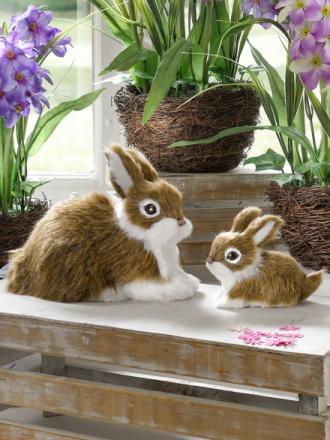 2 harer Tewa brun