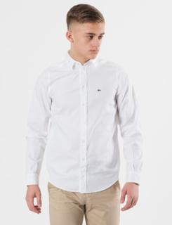 Lacoste, WOVEN SHIRTS, Hvid, Skjorter till Dreng, 14 år