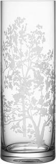 Orrefors Organic Vas Cylinder Orrefors Design