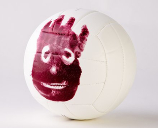 Mr. Wilson (Cast Away)