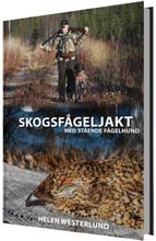 Skogsfågeljakt Med Stående Fågelhund
