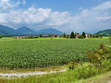 Fietsreis Alpen & Adria