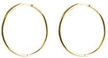 Örhängen Beloved Medium Hoops Gold, ONE SIZE