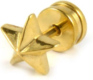 6mm Gullstjerne Stud Øredobb