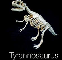 Dinosaur Kaivaussetti Tyrannosaurus