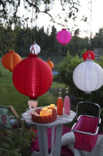 Solenergi Rosa Risboll LED 1-Pack