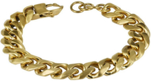AROCK CESAR Armband Guld