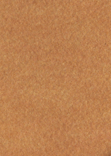 Light Brown Carpet