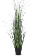 Konstväxt - Sjögräs H120 cm