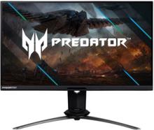 Skærm Predator X25 -