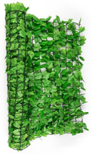 Fency Bright Ivy insynsskyddsstaket vindskydd 300x150 cm murgröna ljusgrön