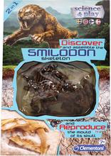 Fossil Smilodon - 51% rabatt