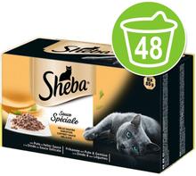 Sheba-rasiat säästöpakkauksessa 48 x 85 g - Selection in Sauce