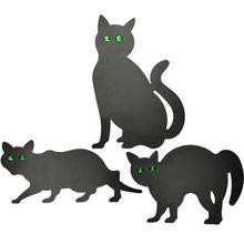 Skrämma: Svart Katt