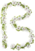 Basil Decoration Flower - Garland White