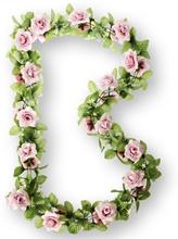 Basil Decoration Flower - Garland Pink