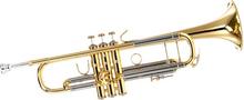Bach 180-37 ML Trumpet