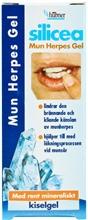 Silicea Mun Herpes 5 gr