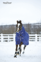 Hästtäcke Horseware Amigo Hero Plus, 200 g