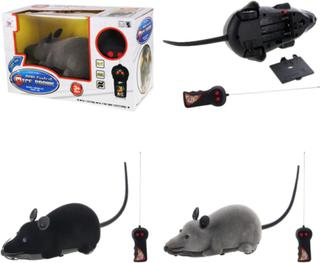 Radiostyrd mus - leksak till katt