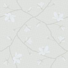 Magnolia - 5452
