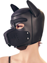 Bad Kitty: Dog Face Mask