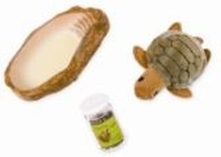 Husdjur sköldpadda - Our Generation