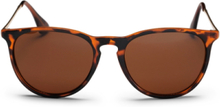 Roma Sunglasses Brown