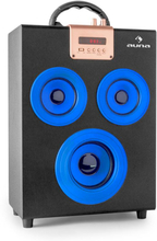 Central Park 2.1 bluetooth-högtalare USB SD bärbar