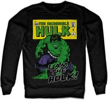 I Am The Hulk Sweatshirt, Sweatshirt