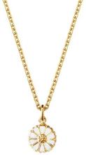 Daisy Mini Halsband Guldpläterat Silver med Vit Emalj