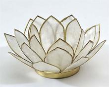 Lotusblomma för värmeljus, natur
