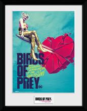 Birds Of Prey - One Sheet Bullet - Inramad bild - multicolor